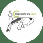 stephanie-cailleux